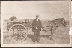 17-1931-William-Campbell-sen.-With-Pony-and-spring-cart-taking-lunches-to-shooting-party-on-Suie-Hill-and-bringing-back-Grouse-and-white-hares-etc.