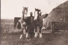 40-man-between-two-horses