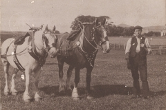 45-Croftend-1908-James-Middleton-pair-of-horses-with-harness