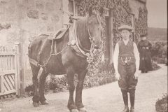52-unknown-boy-with-horse-in-show-harness