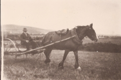 62-Farmer-using-horse-drawn-implement