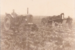 63-Tayloch-1952-turnip-field.-Bertie-Gordon-with-horse-and-cart-Douglas-Muirden-on-tractor